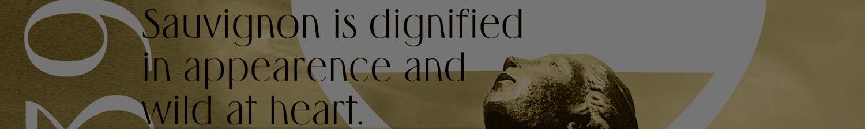 Sauvignon : Typeface Revival Process